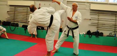 To wydarzenie zgromadziłomistrzów karatez całej Polski. Wśród nich gostynianie-50315
