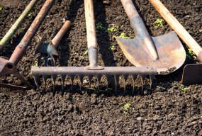 To niezbędnik każdego ogrodnika! Sprawdź, czy masz wszystko...  - 51506