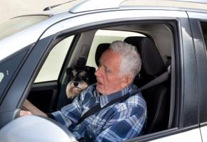 Wczorajszy dzień 70-letni kierowca długo będzie pamiętał. A do tego jeszcze kara...-52214