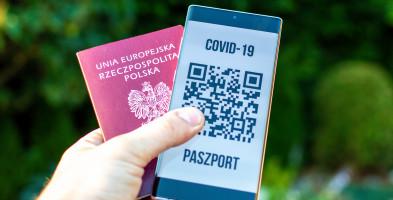 Covidowy biznes się kręci... Fałszywy test, paszport czy certyfikat w 24 godziny?-52584