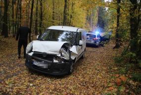 O włos od tragedii. Drzewo runęło przed samochodem. Kierowca nie wyhamował.-53576