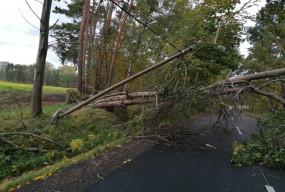 Wiatr spowodował znaczne straty. Straż wyjeżdżała 40 razy!  Pozrywane dachy...-53580
