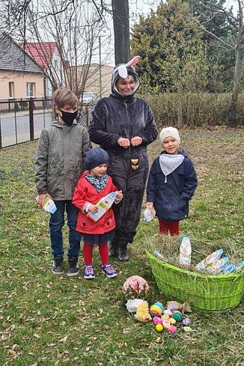 Zajączek zawitał do Drzewiec, w gminie Poniec-8988