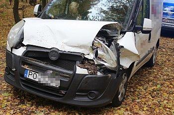 Drzewo runęło przed samochód w rejonie Siedlca-9253