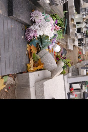 Wichura przeszła przez cmentarz. Tak teraz wygląda...-9256
