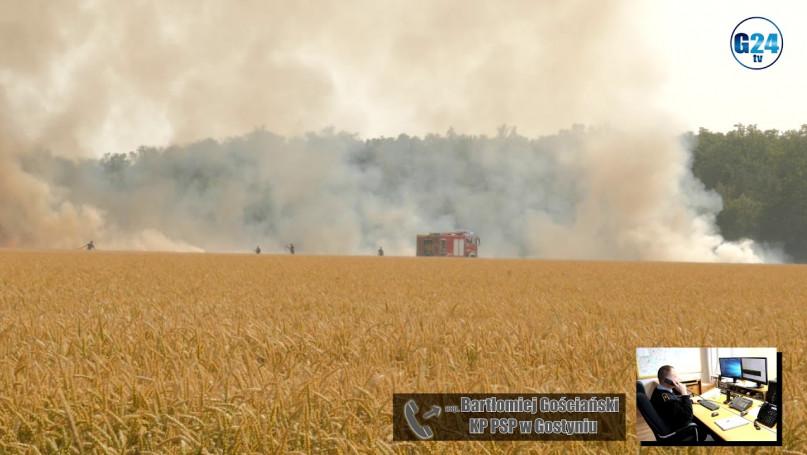 Pożar ścierniska w Anteczkowie, gmina Piaski Ogień szybko się rozprzestrzeniał